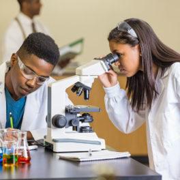 The High School Apprenticeship Program (HSAP)